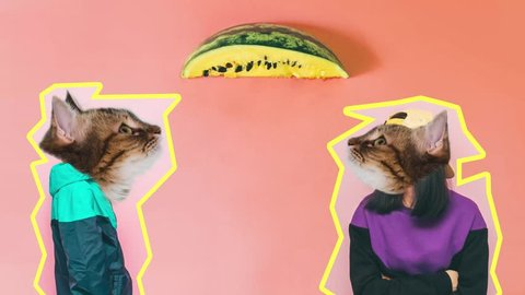 fashion models with the heads of cats watching from a piece of watermelon raining seeds from