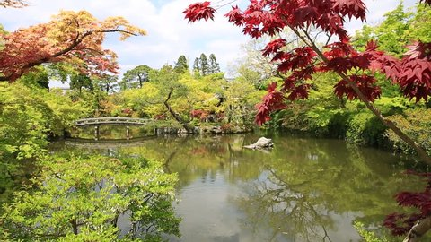 Stone bridge across the Hojo-ike pond surrounded by red linden trees. Eikan-do, the official name is Zenrin-ji, is a temple famous for the Buddha and the main temple of Jodoshu Buddhism, Kyoto, Japan.