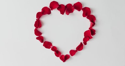 Red rose petals forming heart shape on white background. Flat lay love concept. Stop motion animation.