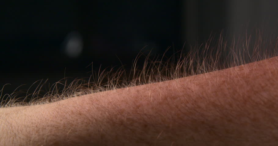 Arm hair rising slow motion, emotional feeling | Shutterstock HD Video #1007537887