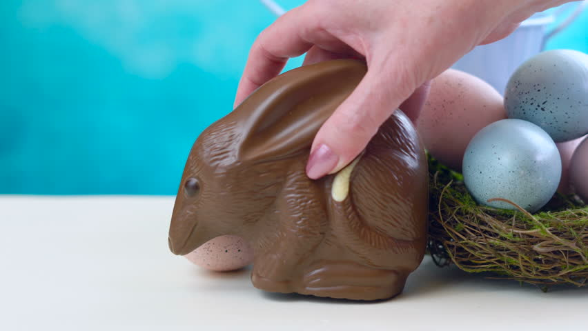 Australian milk chocolate Bilby Easter egg with eggs in nest against a blue and white background.