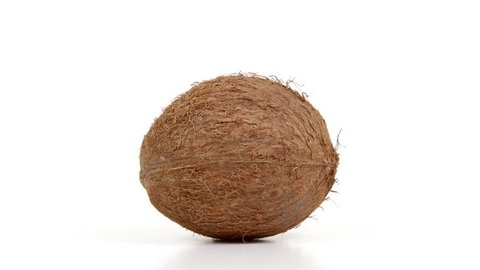 One ripe whole brown tropical coconut rotating on white isolated background. Healthy tropical fruit. Loopable seamless coco rotating