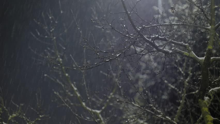 Snow falling in the light of the lantern   Shutterstock HD Video #1008591877