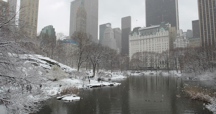 New York City Central Park in snow | Shutterstock HD Video #1008879677