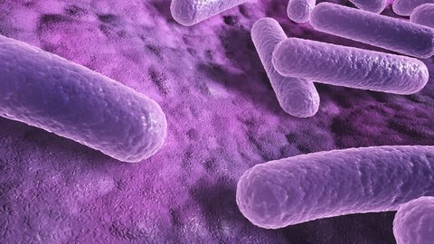 Bacteria on a surface, microscopic 3d closeup animation