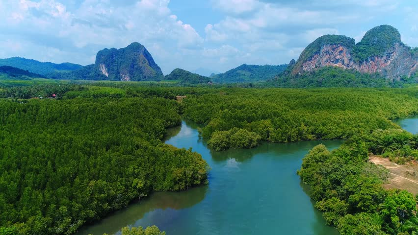AERIAL View: Mangrove green forest in Krabi province, Thailand. Flight above tropical river in south of Thailand.