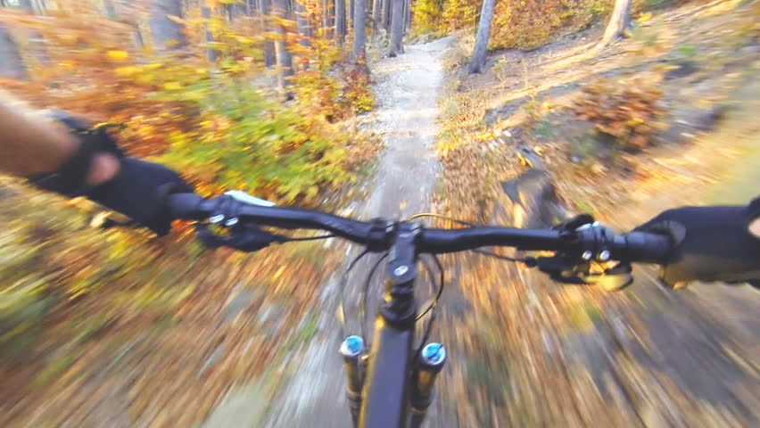 Speed riding an enduro mountain bike in orange autumn forest. Downhill ride in woods. View from first person perspective POV. Full HD gimbal stabilized video, Gopro Hero 4 black.