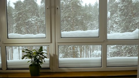 Window. Window overlooking the snow-covered forest