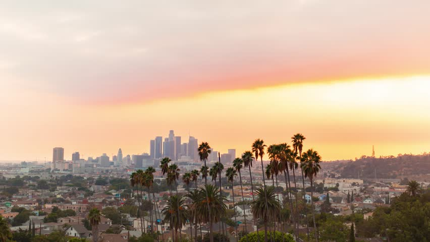 Sunset time-lapse of Downtown Los Angeles with palm trees | Shutterstock HD Video #1009310867