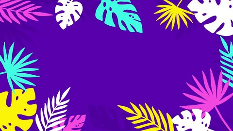 Colorful Tropical Jungle Background Frame of Palm Tree Leaves. 4K Animated Footage.