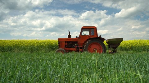 Tractor and farmer in the agricultural wheat and rapeseed fields and dramatic clouds
