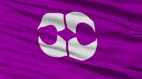 Yachimata close up flag, Chiba prefecture, realistic animation seamless loop - 10 seconds long