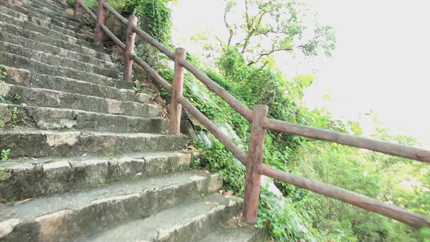 Stone stairs at tropical rainforest park, tracking shot, steadicam | Shutterstock HD Video #1010011337