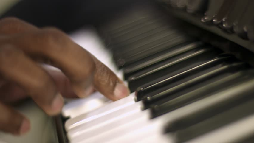 Accordion player. The musician playing the accordion. Close-up. | Shutterstock HD Video #1010042597