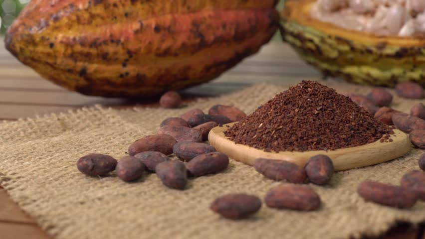 Cacao nibs, cacao beans and raw cocoa fruit on background