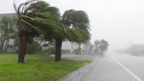 Rockport, TX/US - August 26, 2017 [Major Hurricane Harvey making landfall in Rockport, Texas. Hurricane winds, storm surge flooding along the coastal homes. Hurricane force winds and palm trees.]