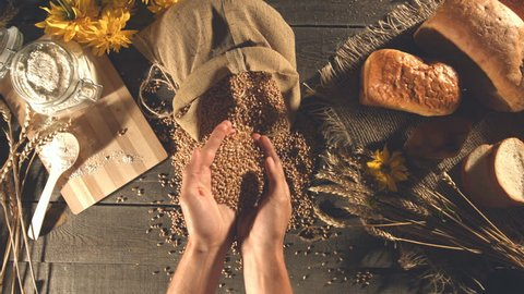 Men's hands take a handful of wheat grains from a sack and pour them back into the bag. Slow motion. Top view. Horizontal pan. Still life with bread, wheat, flour and flowers.