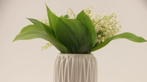 Bouquet of lilies of the valley in the white vase on a white background