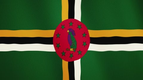 Dominica flag waving animation. Full Screen. Symbol of the country.