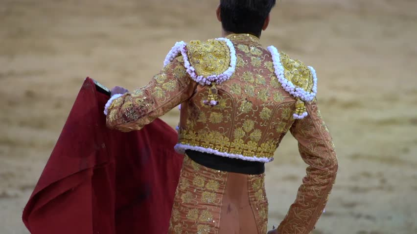 Header of bullfighter