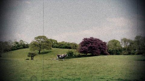 UFO alien abduction cow ufo unidentified flying object aliens close encounter 4k