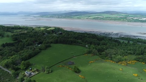 Aerial footage flying over woodland and yellow gorse covered hillside  near the village of Langbank on the south shore of the Firth of Clyde.