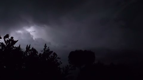 Lightning strike in the darkness with silhouette tree