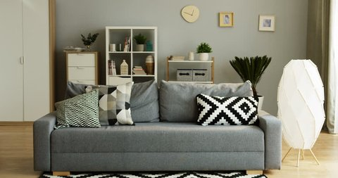 Interior of the cozy living room of the modern designed flat: gray couch with pillows and cupboard with shelves behind. Inside