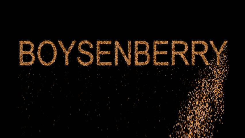 Header of boysenberry