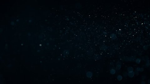 Natural Organic Dust Particles Floating On Black Background. Dynamic Dust Particles Randomly Float In Space With Slow Motion. Shimmering Glittering Particles With Bokeh. Real Colored Particles In Air.