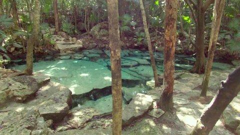 Cenotes in Tulum Tracking Shot