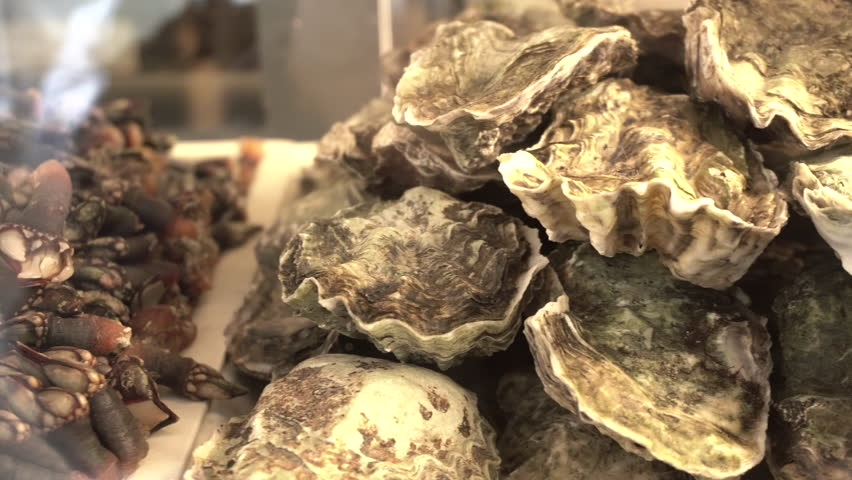 Delicious and fresh barnacles and oysters