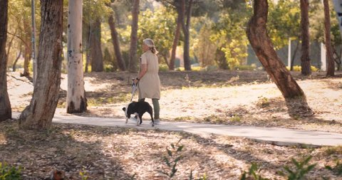 Happy senior woman relaxing on morning walk with dog in the forest