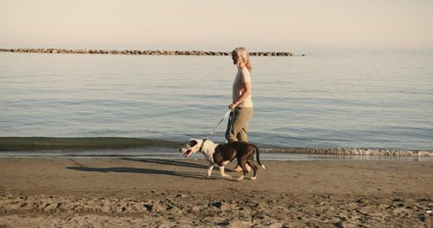 Fashionable senior woman enjoying afternoon walk on the beach with pet dog in summer