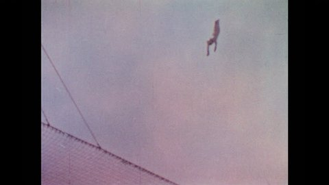 1960s: Human cannonball falls into safety net. Human cannonball waves and slides down barrel of cannon.