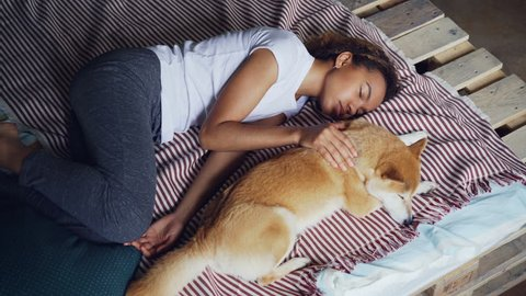 High angle view of pretty young woman in pajamas and her adorable puppy sleeping together on bed at home. Friendship, rest and furniture concept.