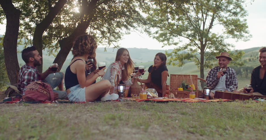 Gruop of friends cheering togetherness during the pic nic. shot in slow motion | Shutterstock HD Video #1013400407