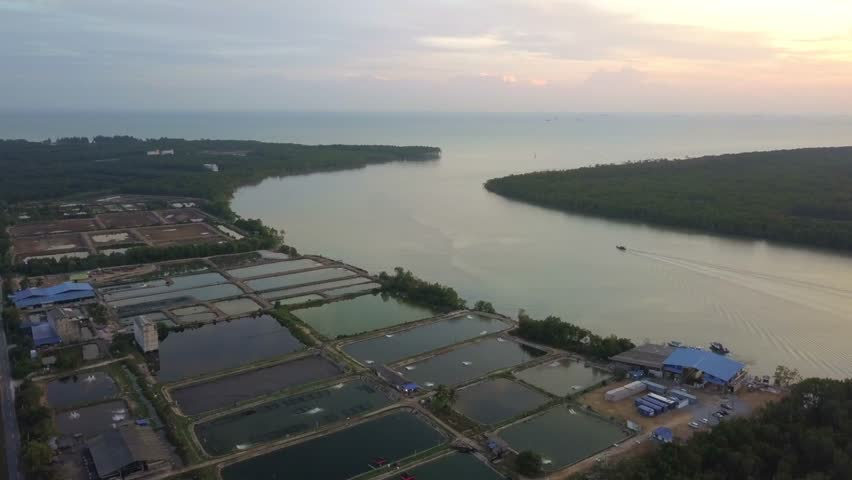 Fine art footage, Aerial view of Fisherman jetty at Kelanang beach, Malaysia during sunset. 4k | Shutterstock HD Video #1013591897