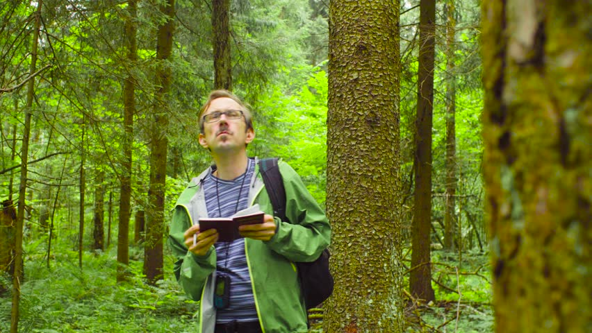 A scientist environmentalist exploring plants in a forest and writing data to a notebook | Shutterstock HD Video #1013869187