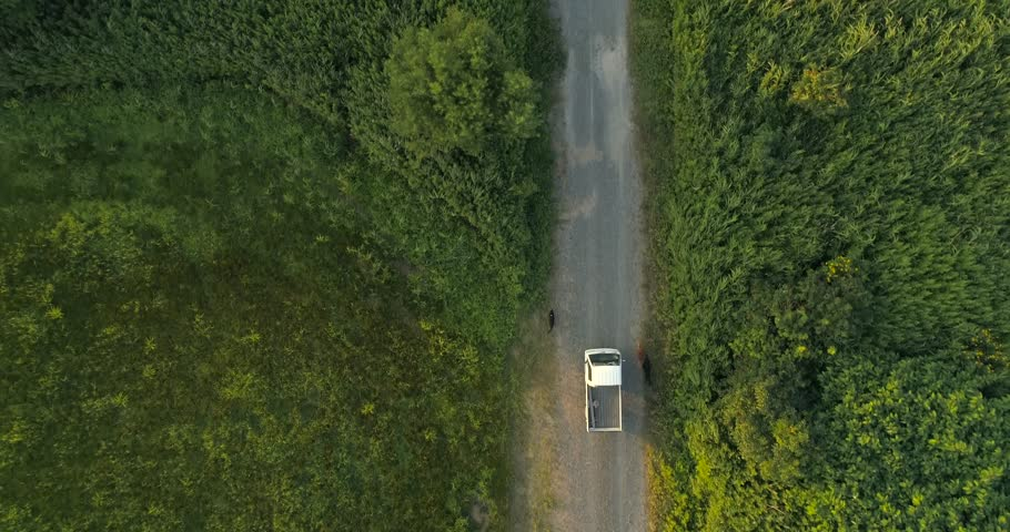 Aerial top down shot of Japanese truck with dogs in chase in rural Hokkaido Japan