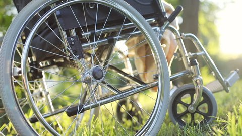 steel empty wheelchair with blanket on green grass in summer sunny park with sun shining brightly on background healthcare concept physical rehabilitation injury prevention wheelchairs accessible