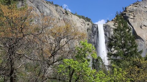 Trees and Bridalveil Fall - Yosemite National Park, California