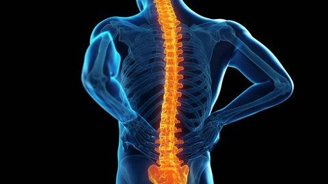 3d rendered, medically accurate illustration of a man having backache