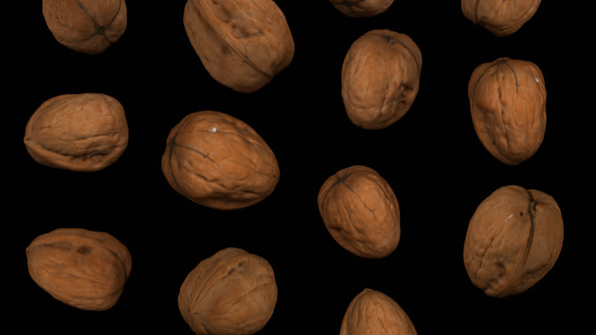 Realistic render of falling walnuts on transparent background (with alpha channel). The video is seamlessly looping, and the 3D objects are scanned from real walnuts.