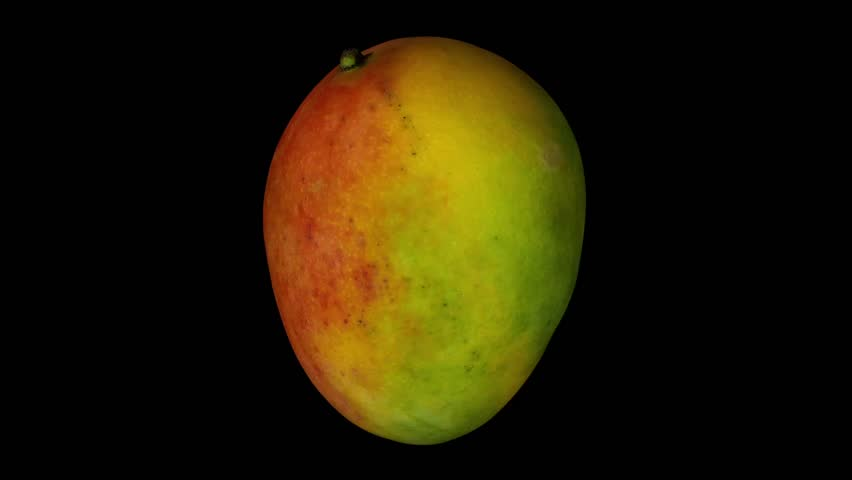 Realistic render of a rotating Sindhoora mango on black background. The video is seamlessly looping, and the 3D object is scanned from a real mango.