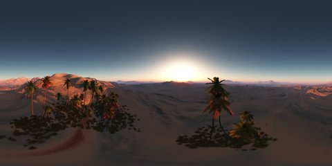 vr 360 panorama of palms in desert at sunset. made with the one 360 degree lense