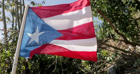 Flag of Puerto Rico Hurricane Maria is regarded as being the worst natural disaster on record to affect Dominica and Puerto Rico.