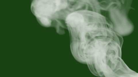 white smoke or steam on green screen with isolated background, slow motion