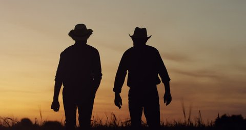 Silhouettes of the father and son shadows in hats walking the field and talking at the dawn or twilights.