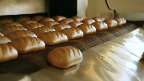 Making a loaf of bread in the bakery. Bread factory production. Bakery factory conveyor. Automated production of bread. Bakery industry. Loaf of bread on the production line in the baking industry.
